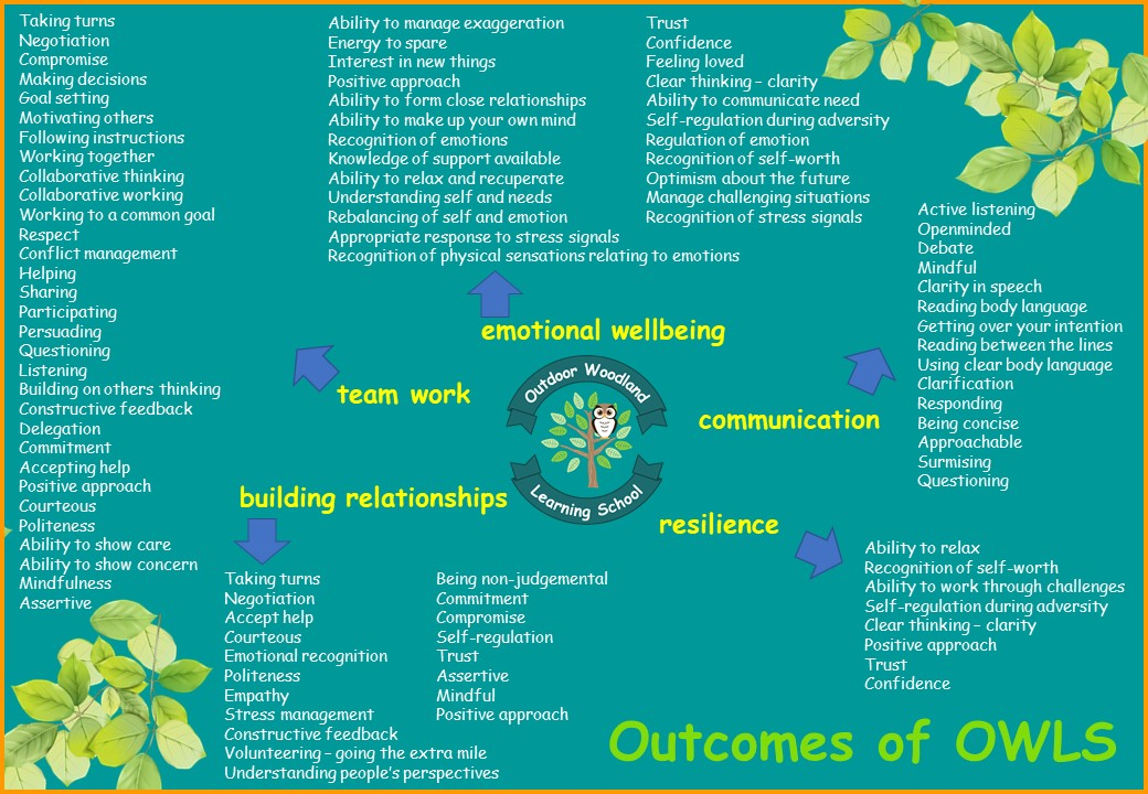 Outcomes of owls cic